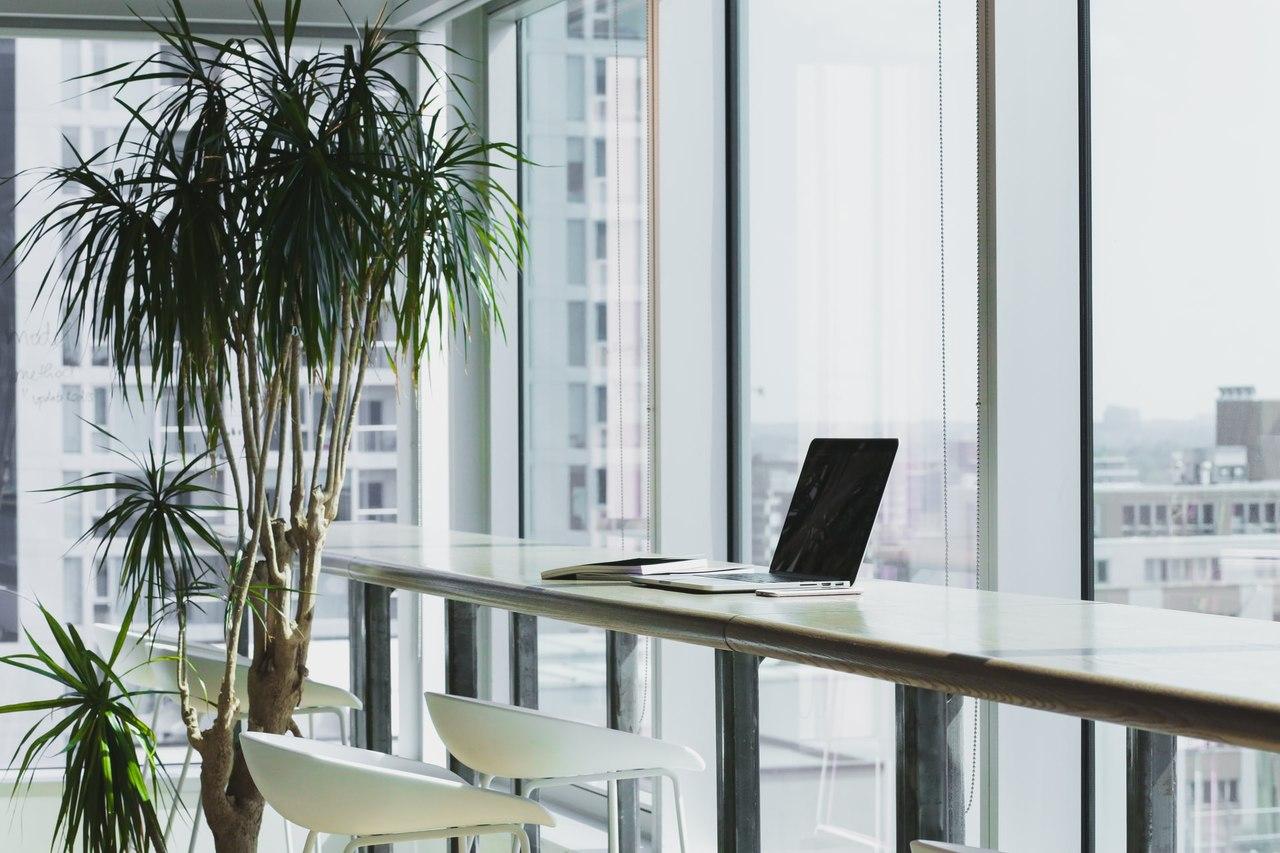 Laptop auf einem Schreibtisch mit AVA Software